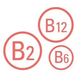 Vitamini B2, B6 i B12