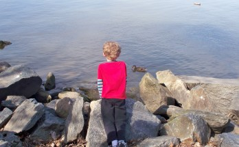 Watching the ducks at Belle Haven Marina