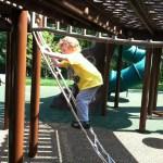 rope ladder at Chessie's Big Back Yard
