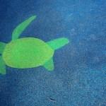 Sea Turtle at Chessie's Backyard Playground