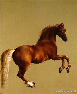 georgestubbs-whistlejacket-001