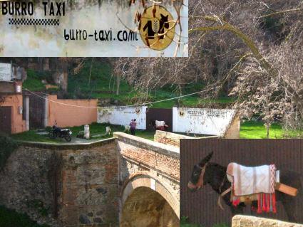 Burro Taxi en Granada