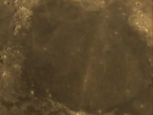 1595-35.jpg