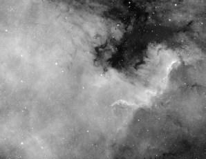 1894-76.jpg