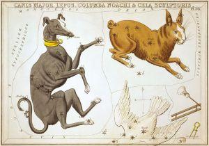 Sidney_Hall_-_Urania's_Mirror_-_Canis_Major,_Lepus,_Columba_Noachi_&_Cela_Sculptoris (3)