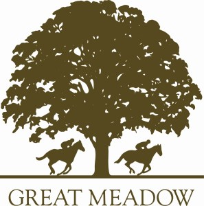 Cancelled - Great Meadow Public Night @ Great Meadow