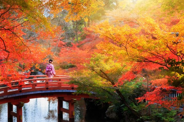 gejsza na moście wśród drzew