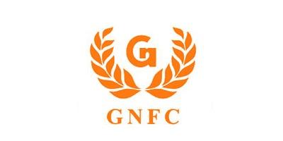 1547704055Gujarat-Narmada-Valley-Fertilizers-and-Chemicals-Ltd-Stock-Chart - Copy