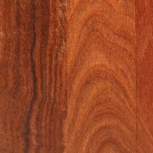 Nova USA Wood Products Types Of Wood Species