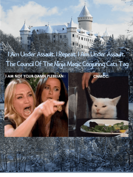 Council Of The Ninja Magic Conjuring AKA CNMCC Cats Tag