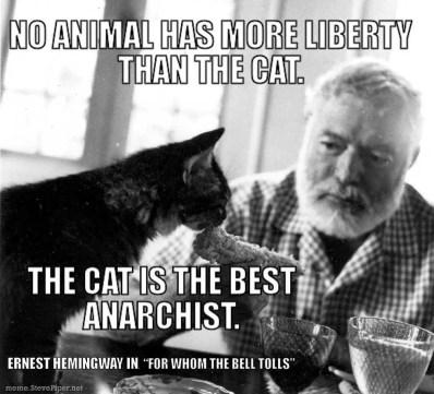 Cat Antichrist