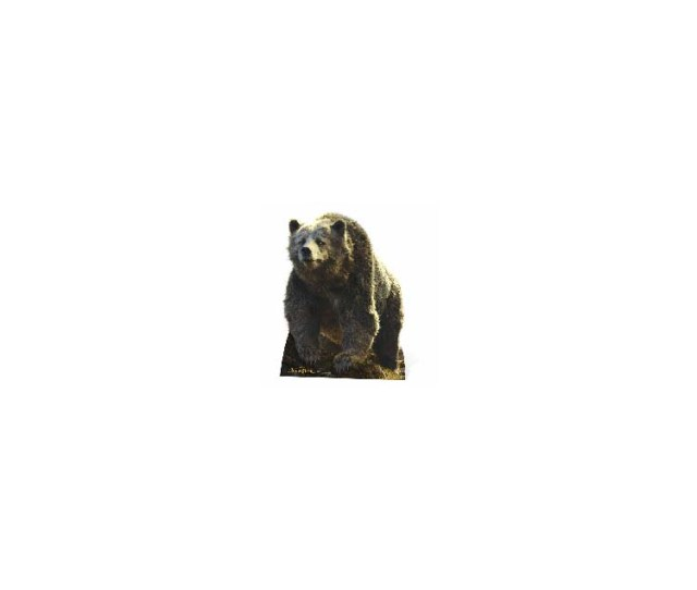 Baloo The Bear Live Action Jungle Book Cutout