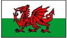 Wales/Welsh Flag 3ft x 2ft