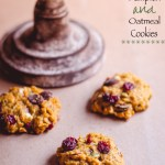 Pumpkin and Oatmeal cookies