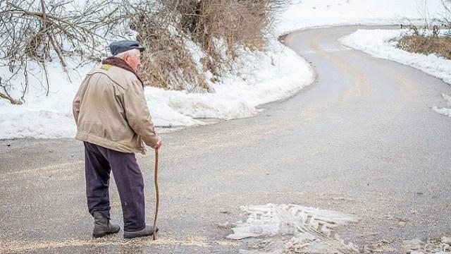 U Srbiji se poljoprivredom bave najviše stariji od 65 godina