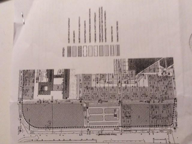 NS: Uništiš park pa praviš parking - čist vazduh i razum protiv betonizacije i profita