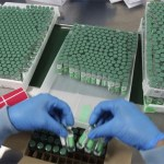 I Holandija obustavlja vakcinaciju Astra-Zenekom
