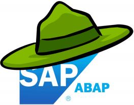 SAP Developer or Forest Ranger