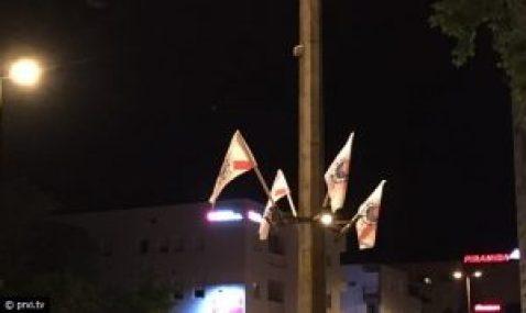 zastave