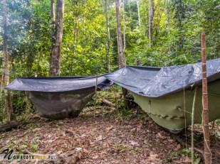 Dżungla Amazońska, nocowanie w dżungli w hamakach