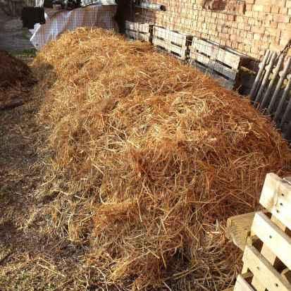 Komposttoiletten. Sanitärtechnik durch Kompostierung. Komposthaufen mit Stroh abgedeckt