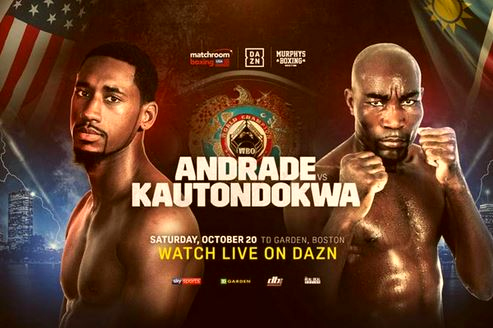 Demetrius Andrade vs Walter Kautondokwa Live Streamed on DAZN
