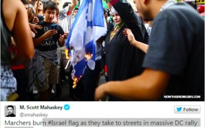 anti-israel-protests-burning-flag-washington-dc-august-2-2014-04