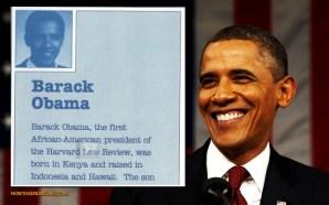 barack-hussein-obama-literary-agent-lists-birthplace-as-kenya-africa-birther-traitor-liar-antichrist