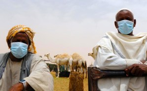 muslim-practice-drinking-camel-urine-causing-spike-in-mers-infections-islam
