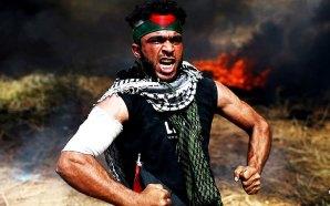 hamas-palestinian-death-toll-gaza-strip-un-condemns-israel-defending-borders-pope-calls-peace