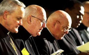 one-third-catholic-bishops-america-accused-coverup-for-priest-sexual-assault-children-vatican-pope-francis