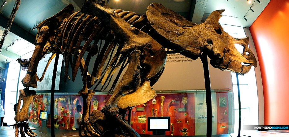 csun-scientist-mark-armitage-gets-fired-after-discovering-soft-tissue-triceratops-horn-sues-wins-settlement-creation-science
