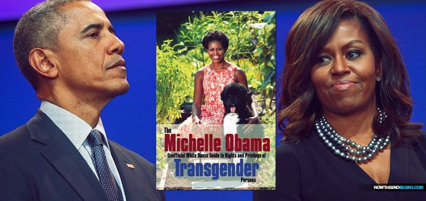 The Michelle Obama Transgender Guide