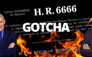 H.R. 6666 is a Mark of the Beast COVID-19 government surveillance plot