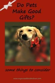 Do Pets Make Good Gifts?