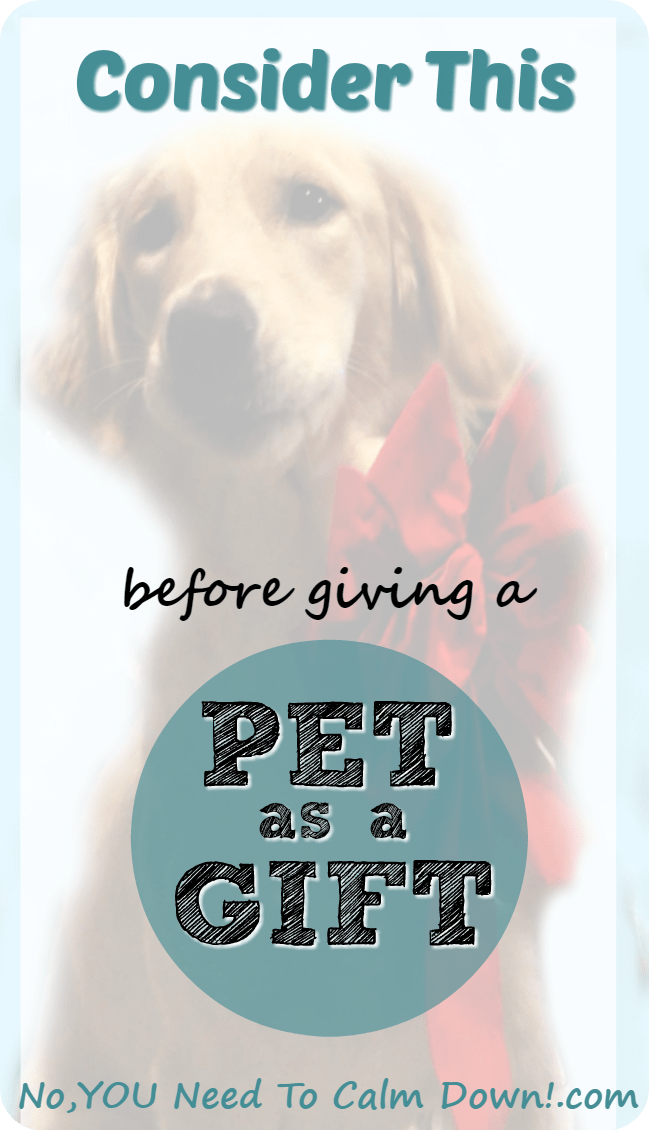 Do pets make good gifts? Some things to consider.