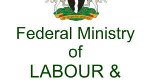 Federal Government Special public works is recruiting 774000 Apply here now