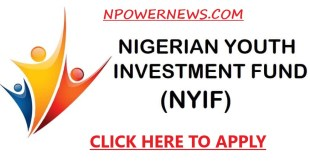Federal Government Reveals Date for NYIF Loan Applications