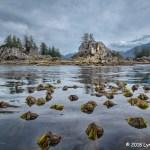 1st Place Scenic - Wild Island with Bull Kelp by Lynn Fox