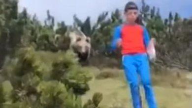 Photo of Δωδεκάχρονος απόλυτα ψύχραιμος κατέβηκε λόφο με μια αρκούδα πίσω του(Βίντεο)