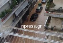 Photo of Απίστευτες καταστροφές στην Καρδίτσα όπου το νερό στους δρόμους έφτασε το ένα μέτρο – Έπεσαν τα δίκτυα Vodafone και Cosmote (Βίντεο-Εικόνες)