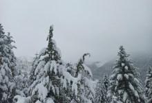 Photo of Χιόνια στην Ορεινή Ναυπακτίας: Εικόνες από Γραμμένη Οξυά