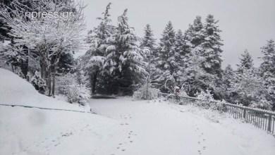 Photo of Ορεινή Ναυπακτία: Στα λευκά η Αποδοτία – Έστειλε μηχανήματα και η Περιφέρεια (Εικόνες)