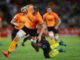 Difese traballanti e mete a ripetizione, il riassunto della sesta giornata di Super Rugby