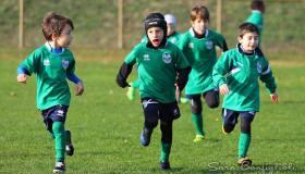 Modena: Giovanili, ultime gare dell'anno per i biancoverdeblù