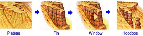 Four step formation process (Plateau-Fin-Window-Hoodoo)