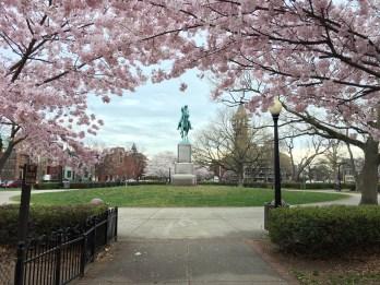 Stanton Park in Spring