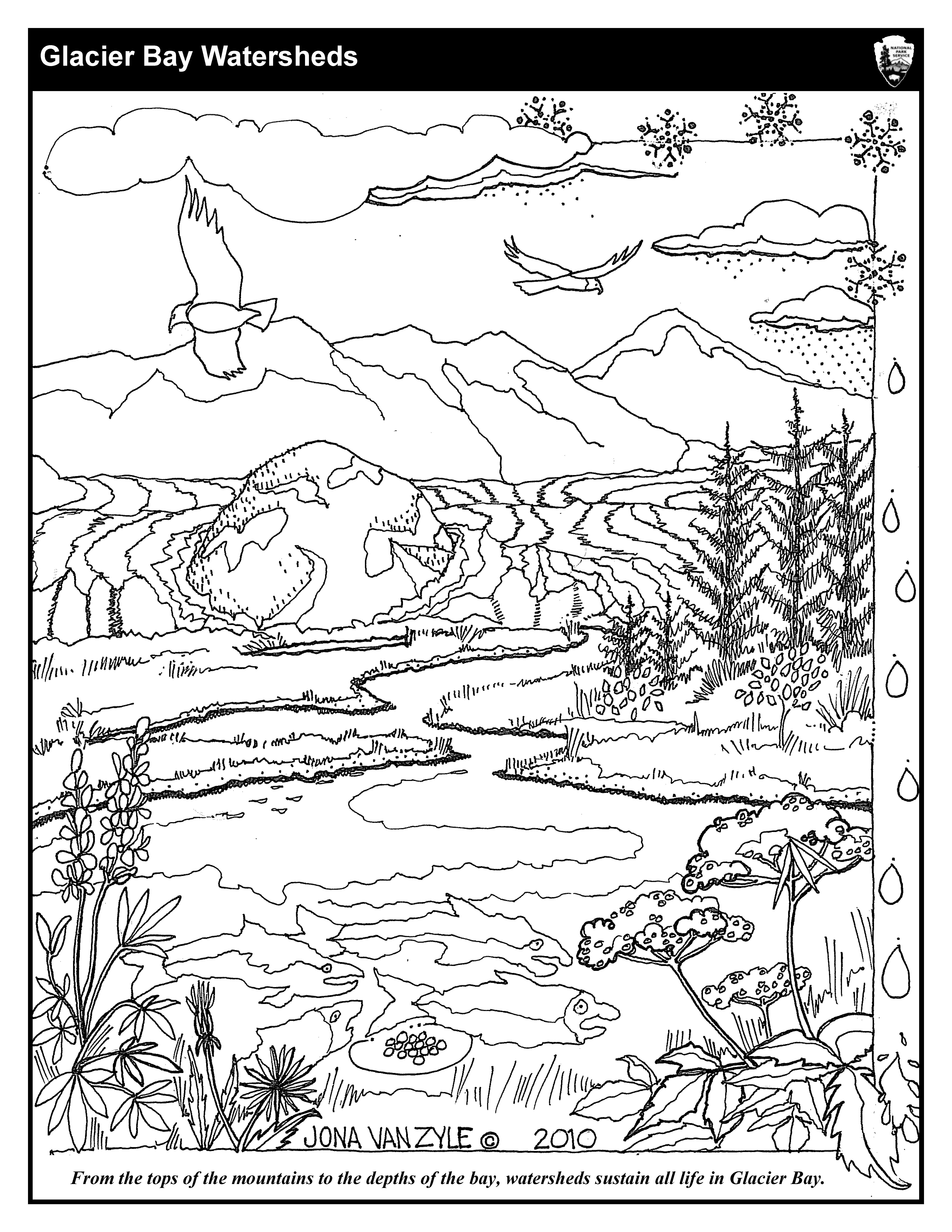 Estuary Coloring Page Pages Sketch Coloring Page