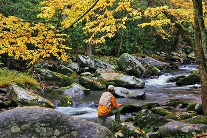 https://i1.wp.com/www.nps.gov/grsm/planyourvisit/images/Fishing-Little-River-bielenberg.jpg