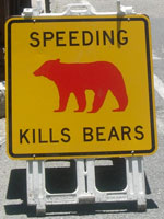 Yellow road sign with a red bear image on it